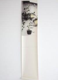 Panneau de papier Hanging Basket par Deb Bowness