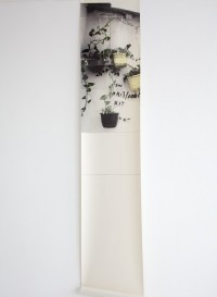 Trompe l'oeil 'Hanging basket' wallpaper by Deborah Bowness