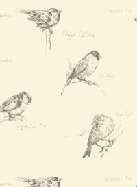 Papier-peint oiseaux Crested Tit par Edwyn Collins
