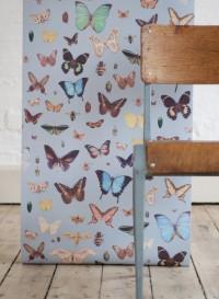 Papier-peint Papillons par Ella Doran