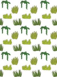 Papier peint Plantes Succulentes