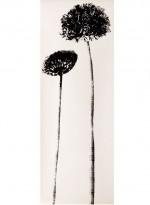 Airhead, panneaux de papier pissenlits par Tracy Kendall