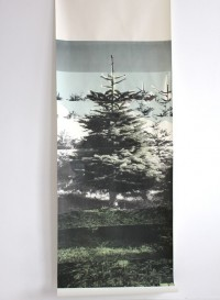 Christmas Tree by Deborah Bowness
