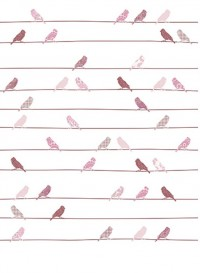 XL Wallpaper Pink Birds on a wire