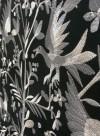 Papier peint brodé Aves noir