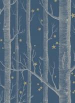 Papier peint Woods and Stars blanc sur bleu foncé par Cole and Son