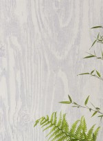 Papier peint trompe l'oeil écorce grise Woodgrain