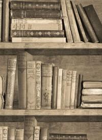 Papier peint trompe l'oeil Bibliothèque Sepia