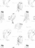 Little Owl & Crossbill wallpaper designed by Edwyn Collins